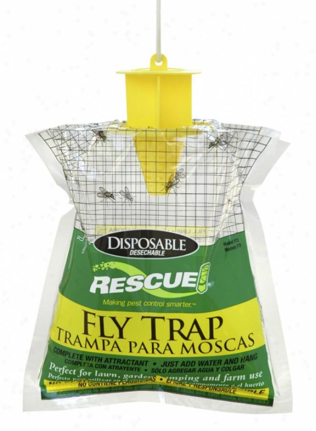 Fly Web Fly Trap