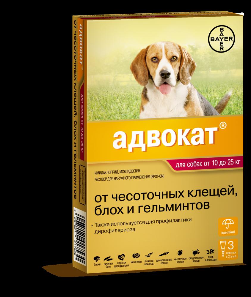 Капли от клещей для собак
