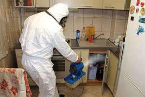 Дезинсекция или обработка от тараканов в квартире